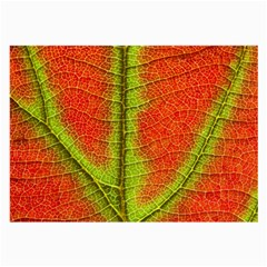 Nature Leaves Large Glasses Cloth (2 Side)