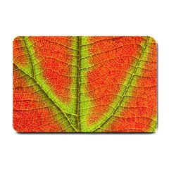 Nature Leaves Small Doormat