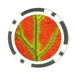 Nature Leaves Poker Chip Card Guard