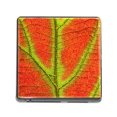 Nature Leaves Memory Card Reader (square)