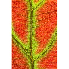 Nature Leaves 5 5  X 8 5  Notebooks