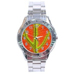 Nature Leaves Stainless Steel Analogue Watch