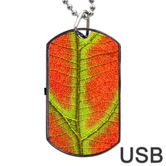 Nature Leaves Dog Tag Usb Flash (one Side)