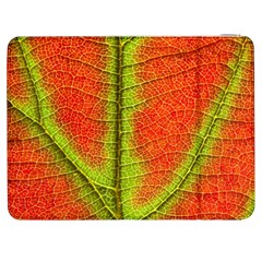 Nature Leaves Samsung Galaxy Tab 7  P1000 Flip Case