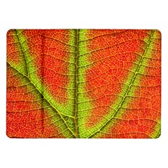 Nature Leaves Samsung Galaxy Tab 10 1  P7500 Flip Case