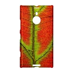 Nature Leaves Nokia Lumia 1520