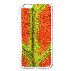 Nature Leaves Apple Iphone 6 Plus/6s Plus Enamel White Case