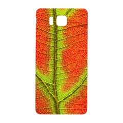 Nature Leaves Samsung Galaxy Alpha Hardshell Back Case