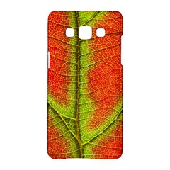 Nature Leaves Samsung Galaxy A5 Hardshell Case