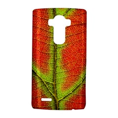 Nature Leaves Lg G4 Hardshell Case