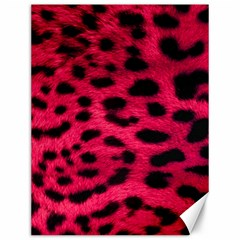 Leopard Skin Canvas 12  X 16
