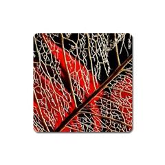 Leaf Pattern Square Magnet