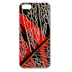 Leaf Pattern Apple Seamless Iphone 5 Case (clear)