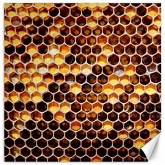 Honey Honeycomb Pattern Canvas 20  X 20