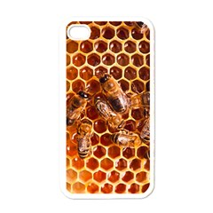 Honey Bees Apple Iphone 4 Case (white)