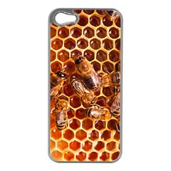 Honey Bees Apple Iphone 5 Case (silver)