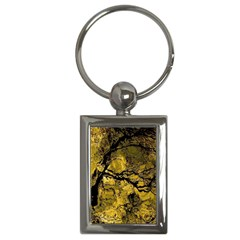 Colorful The Beautiful Of Traditional Art Indonesian Batik Pattern Key Chains (rectangle)
