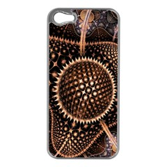 Brown Fractal Balls And Circles Apple Iphone 5 Case (silver)