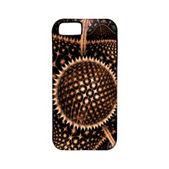 Brown Fractal Balls And Circles Apple Iphone 5 Classic Hardshell Case (pc+silicone)