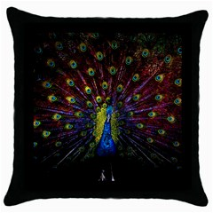 Beautiful Peacock Feather Throw Pillow Case (black)