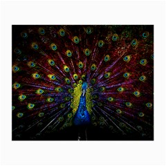 Beautiful Peacock Feather Small Glasses Cloth