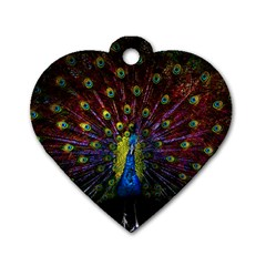 Beautiful Peacock Feather Dog Tag Heart (two Sides)