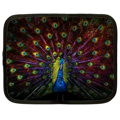 Beautiful Peacock Feather Netbook Case (xxl)