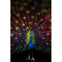 Beautiful Peacock Feather 5 5  X 8 5  Notebooks