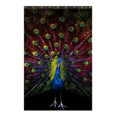 Beautiful Peacock Feather Shower Curtain 48  X 72  (small)