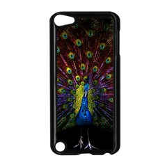 Beautiful Peacock Feather Apple Ipod Touch 5 Case (black)