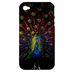Beautiful Peacock Feather Apple Iphone 4/4s Hardshell Case (pc+silicone)