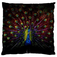 Beautiful Peacock Feather Large Flano Cushion Case (two Sides)