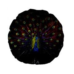 Beautiful Peacock Feather Standard 15  Premium Flano Round Cushions