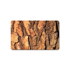 Bark Texture Wood Large Rough Red Wood Outside California Magnet (name Card)