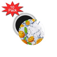 Fruits Water Vegetables Food 1 75  Magnets (10 Pack)