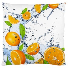 Fruits Water Vegetables Food Large Cushion Case (one Side)