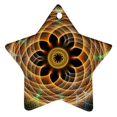 Mixed Chaos Flower Colorful Fractal Ornament (star)