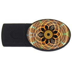 Mixed Chaos Flower Colorful Fractal Usb Flash Drive Oval (4 Gb)