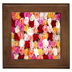 Rose Color Beautiful Flowers Framed Tiles