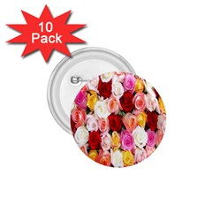 Rose Color Beautiful Flowers 1 75  Buttons (10 Pack)