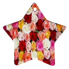 Rose Color Beautiful Flowers Star Ornament (two Sides)