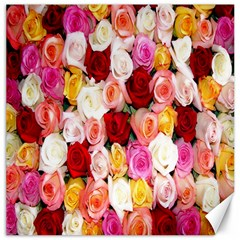 Rose Color Beautiful Flowers Canvas 16  X 16