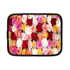 Rose Color Beautiful Flowers Netbook Case (small)