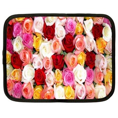 Rose Color Beautiful Flowers Netbook Case (xxl)