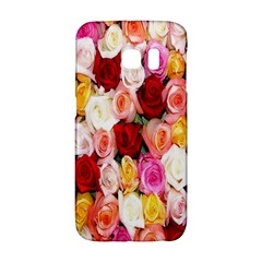 Rose Color Beautiful Flowers Galaxy S6 Edge