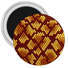 Snake Skin Pattern Vector 3  Magnets