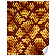 Snake Skin Pattern Vector Canvas 12  X 16