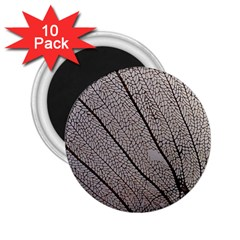 Sea Fan Coral Intricate Patterns 2 25  Magnets (10 Pack)