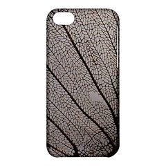 Sea Fan Coral Intricate Patterns Apple Iphone 5c Hardshell Case