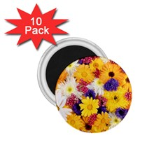Colorful Flowers Pattern 1 75  Magnets (10 Pack)